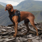 HARNAIS POUR CHIEN ABOVE AND BEYOND